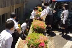 花壇6-2.png