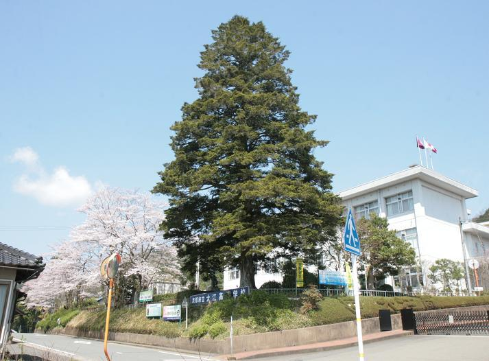 京都府立学校事務職員協会