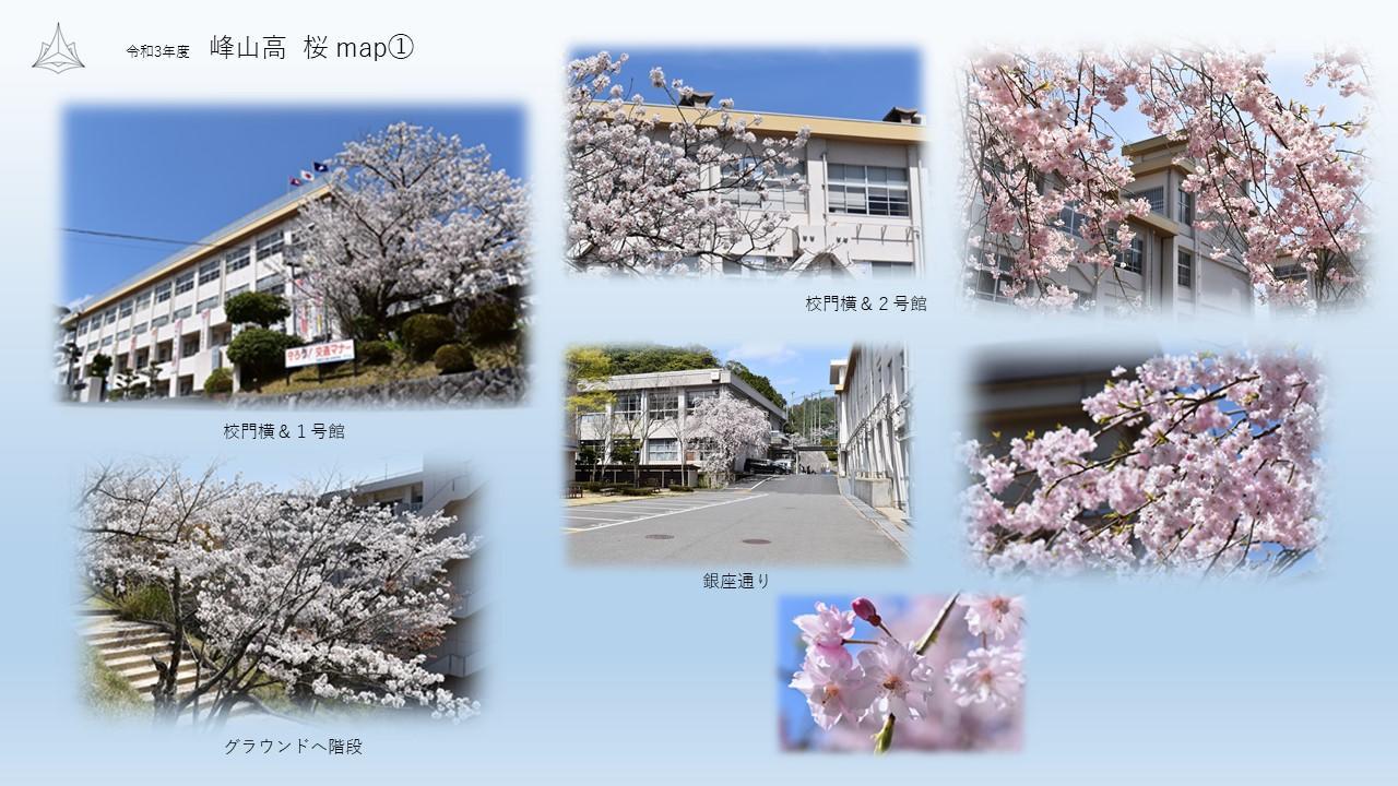 峰高桜map①.JPG