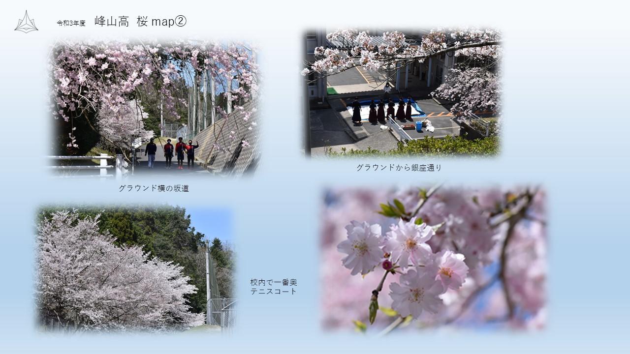 峰高桜map②.JPG