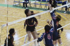 volleyball_girl_201702_8.jpg