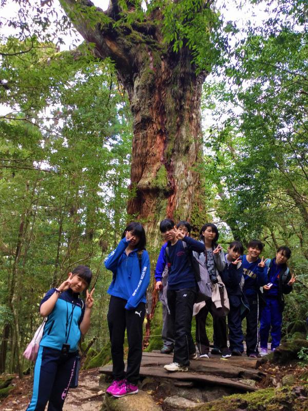 http://www.kyoto-be.ne.jp/nishijyouyou-hs/mt/schoollife/20171207_ECB4EF21-A03D-4C62-A3C8-BB7D9E8F76C6.jpg