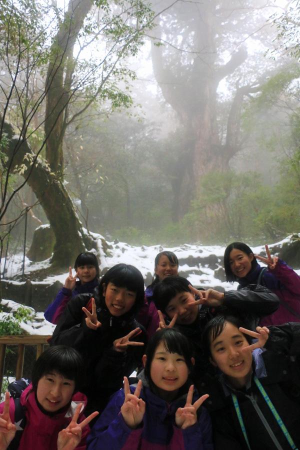http://www.kyoto-be.ne.jp/nishijyouyou-hs/mt/schoollife/20171207_IMG_9277.jpg