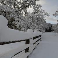 農場の雪景色